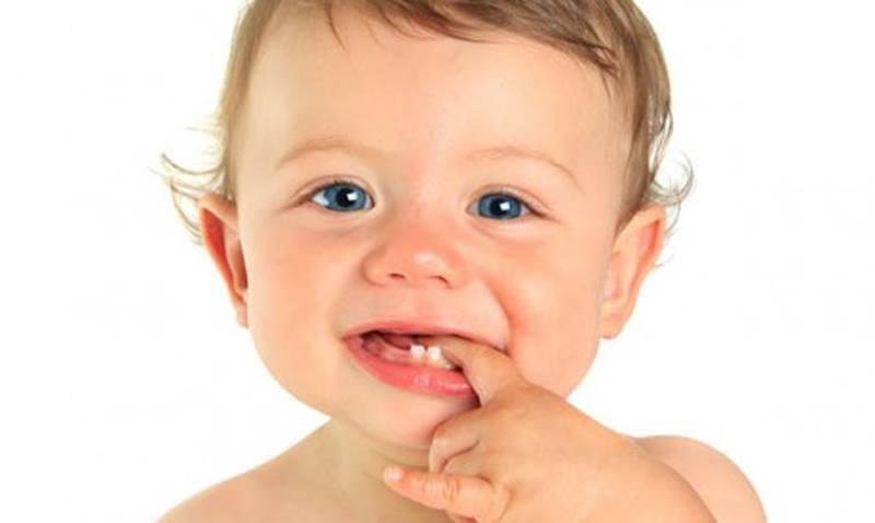 Dove sono i denti quando nasciamo?