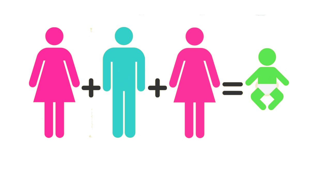 Esistono figli genetici di tre genitori diversi?