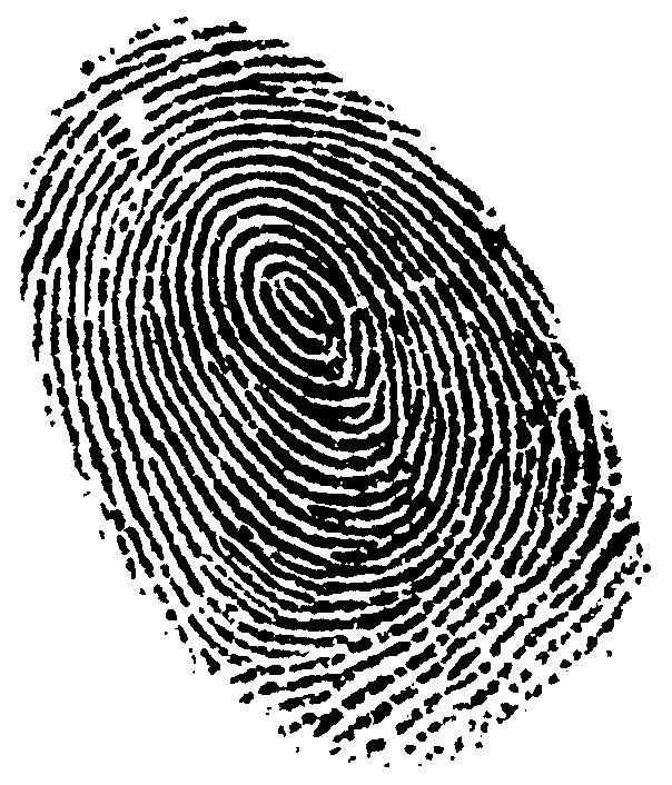 Un'impronta digitale