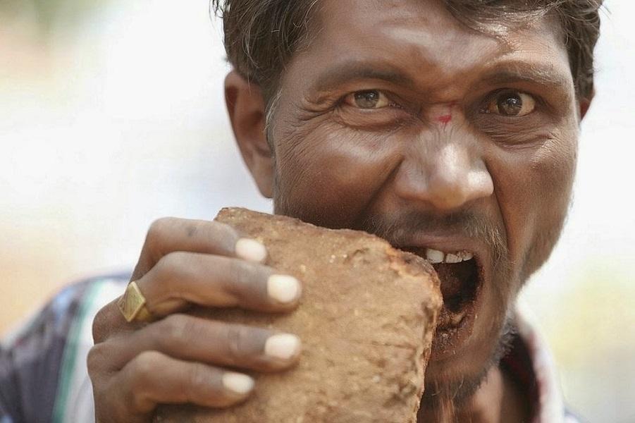 Cosa succede se si mangiano le pietre?