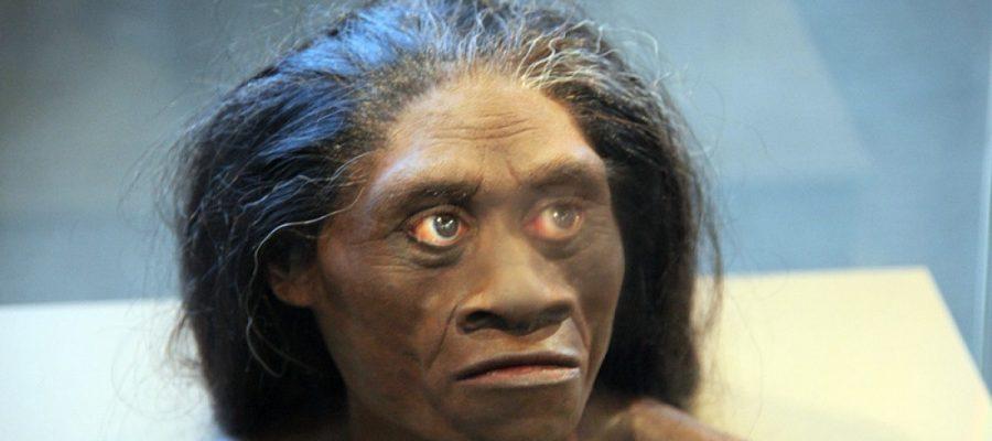 È vero che nell'Indonesia preistorica viveva una razza di hobbit?