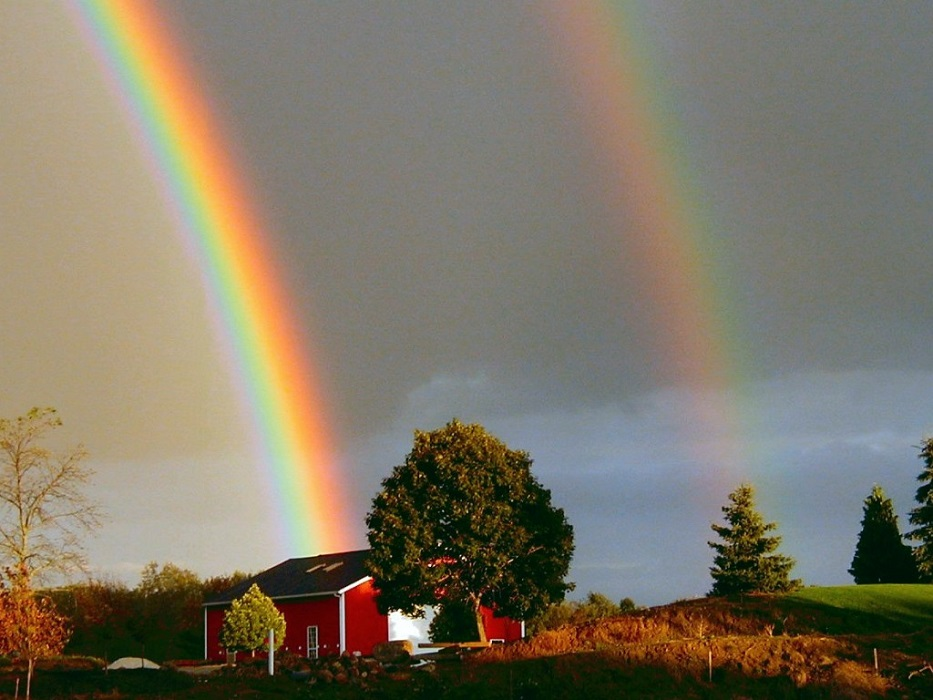 Perché a volte si vedono due arcobaleni?