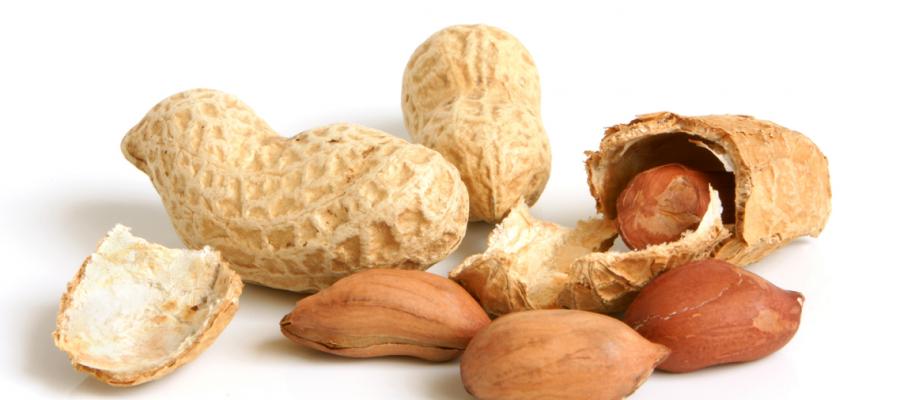 Si guarire dall'allergia alle arachidi?