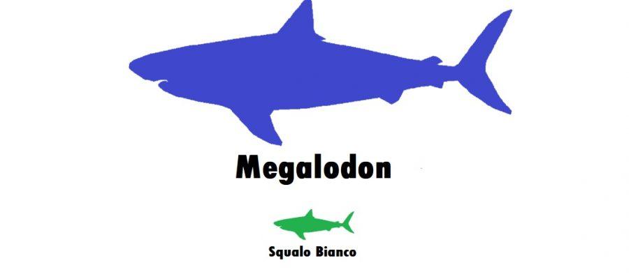Gli squali preistorici erano più grandi degli squali di oggi?