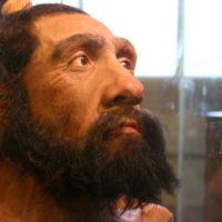 Gli uomini primitivi sapevano navigare?