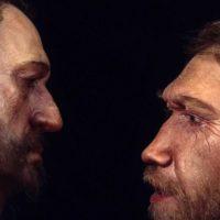 Neanderthal e Sapiens si sono mai accoppiati?