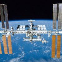Perché a bordo dell'ISS c'è un acquario?