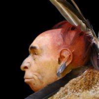 È vero che i Neanderthal si adornavano di penne e piume?