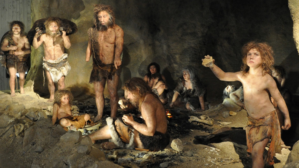 Neanderthal cannibali