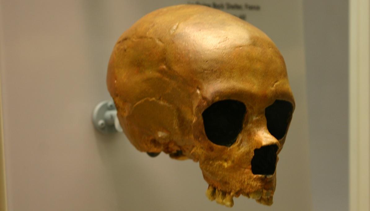 L'estinzione dei Neanderthal