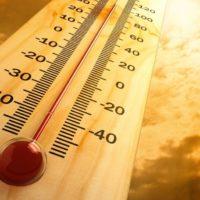 Qual è stato l'anno più caldo in Italia negli ultimi 100 anni?