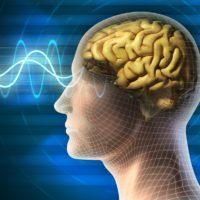 Un'onda cerebrale è uguale a uno stato mentale?