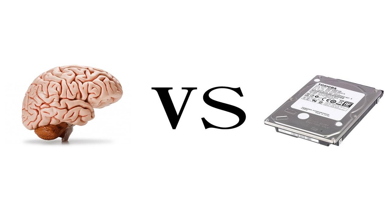 Di quanti gigabyte è composto il cervello?