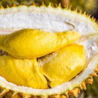 Esiste frutta puzzolente?