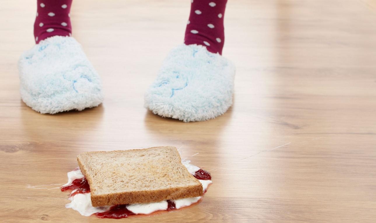 Mangiare il cibo caduto per terra fa male?