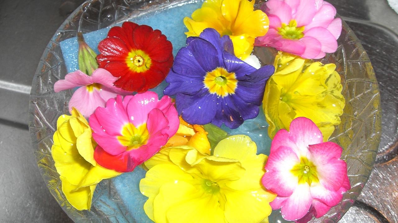 Quali fiori si possono mangiare?