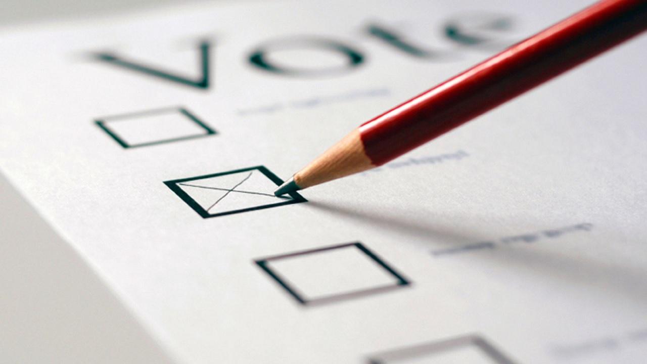 Matita e voto