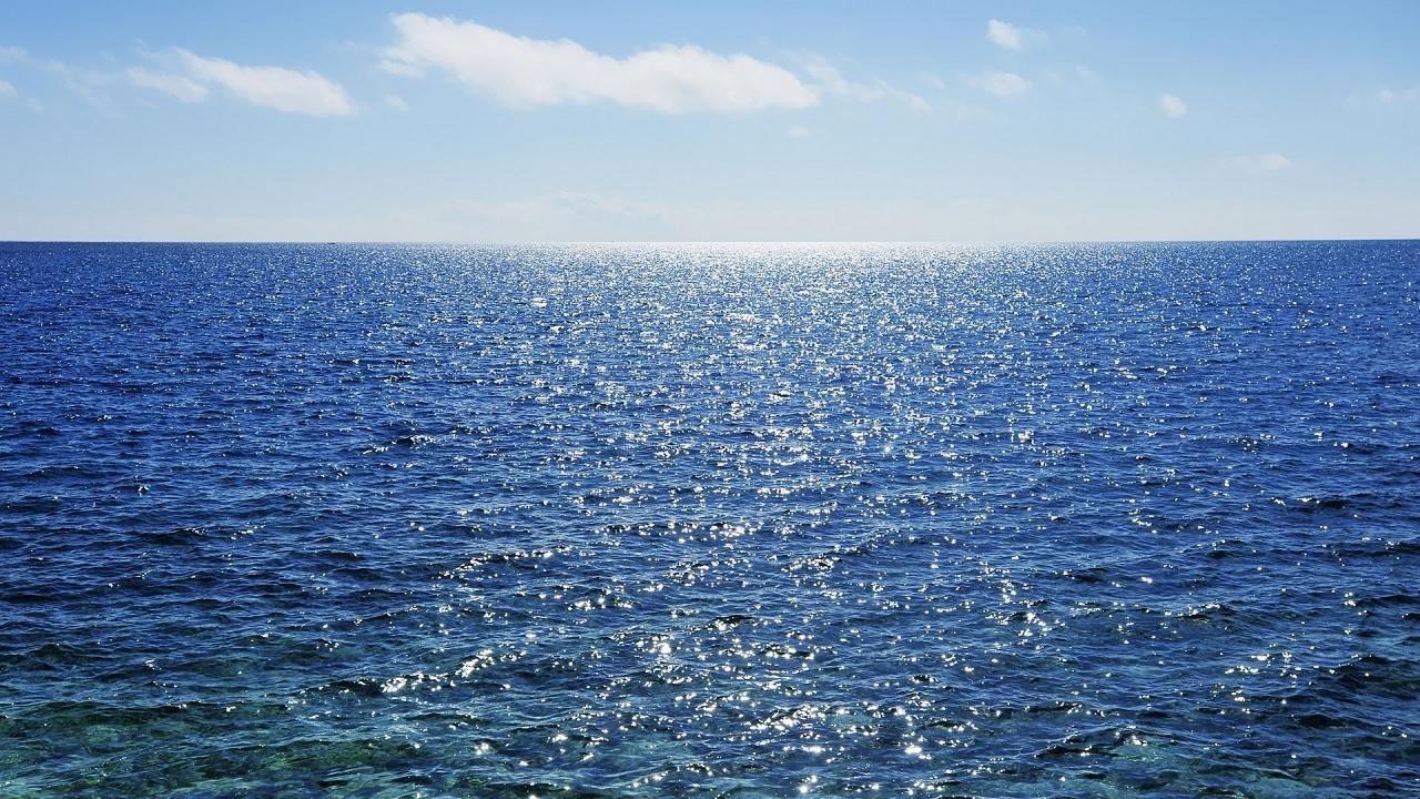 Cosa succede se beviamo l'acqua del mare?