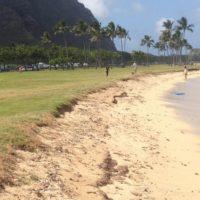 È più sporca la sabbia o il mare?