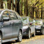 Perché le auto sotto gli alberi si sporcano?