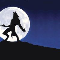 Esistono i lupi mannari?
