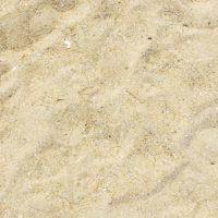 Quanti batteri ci sono in spiaggia?