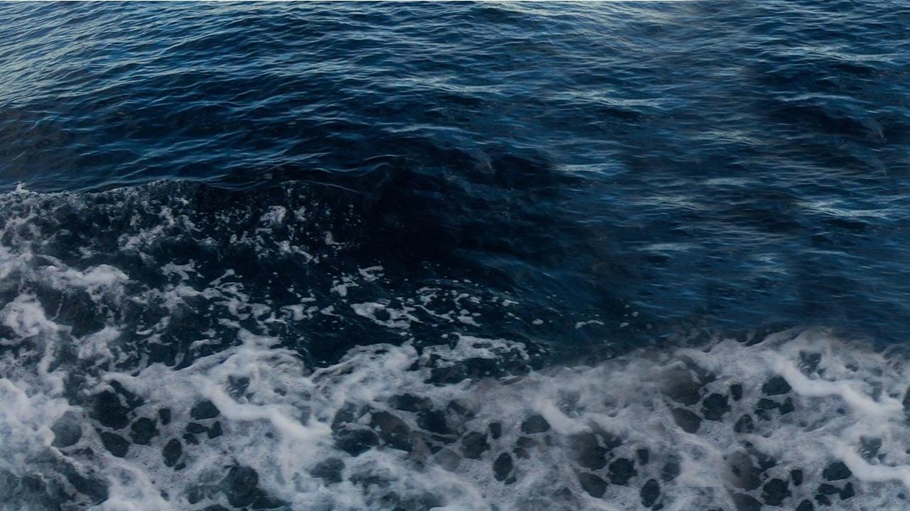 Dimetil solfuro, l'odore marino