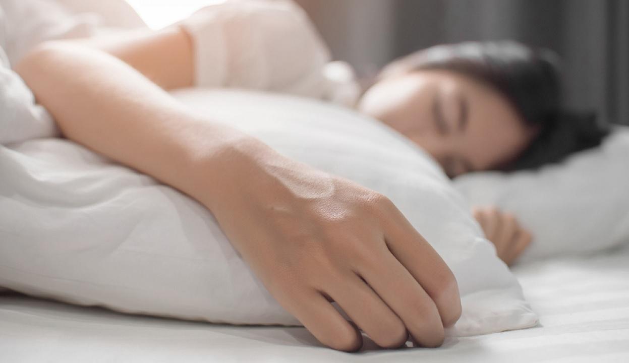 Il sonno allunga la vita