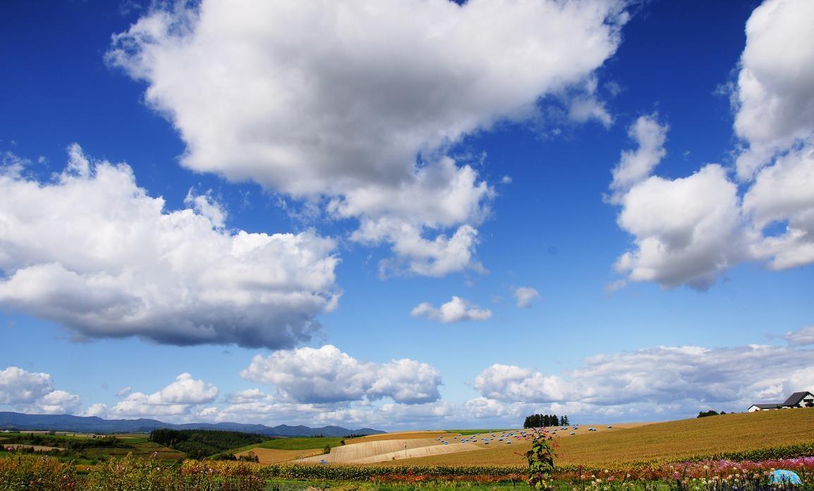 Perché le nuvole hanno varie forme?