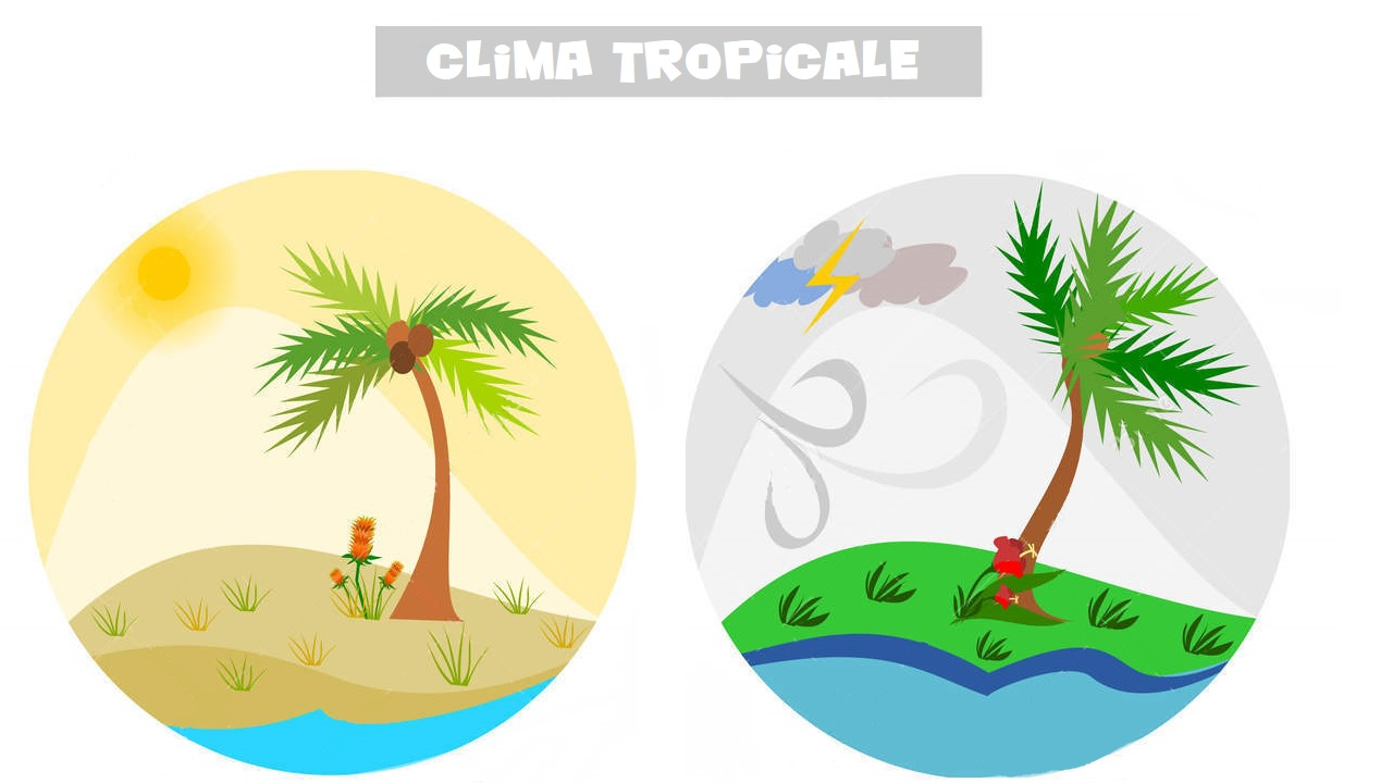 Le stagioni ai tropici