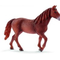 Un cavallo quanti cavalli sviluppa?
