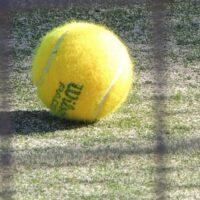 Perché le palline da tennis hanno il pelo?