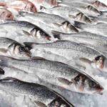 Perché il pesce puzza anche se è fresco?