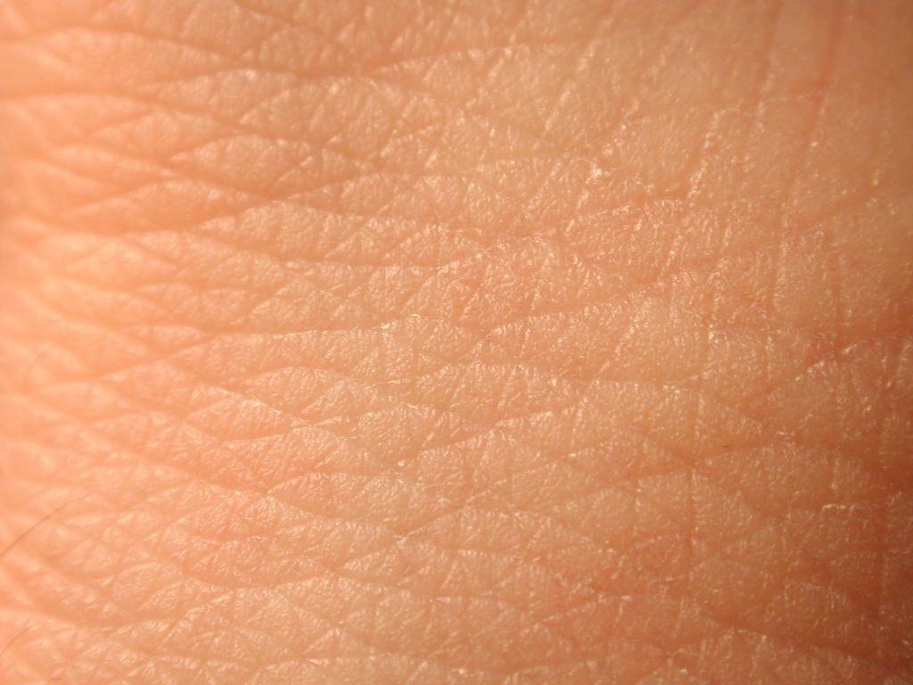 Quanto pesa la pelle del nostro corpo?