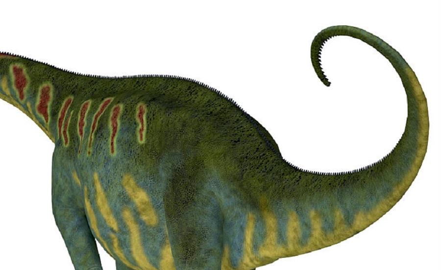 La coda dei dinosauri