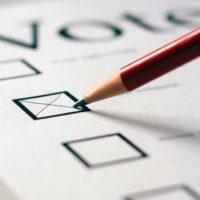 Perché per votare non possiamo usare la nostra matita?