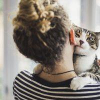 Quando è iniziato il rapporto tra uomini e gatti?