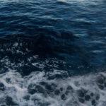 Di cosa odora il mare?