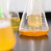 L'urina è sterile?