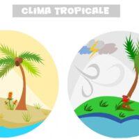 Perché ai tropici la stagione è sia secca che umida?