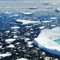 Perché in Artide il ghiaccio fluttua sull'acqua?